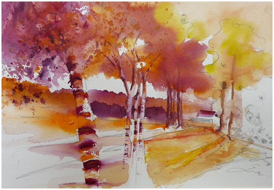 kromme compositie-bomen-fijne zomer 22juli